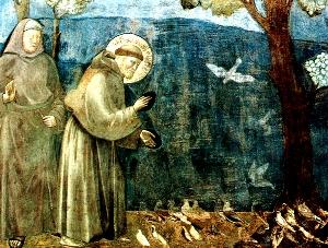Ferenc pápa: az egyház kincsei